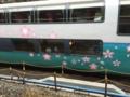 スーパービュー踊り子号(251系RE-4編成)河津桜トレイン@東京駅