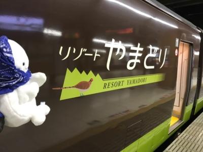 足利イルミネーションやまどり@大宮駅