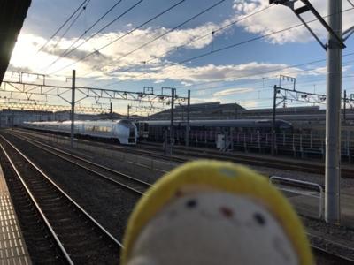 華と651系@新前橋駅