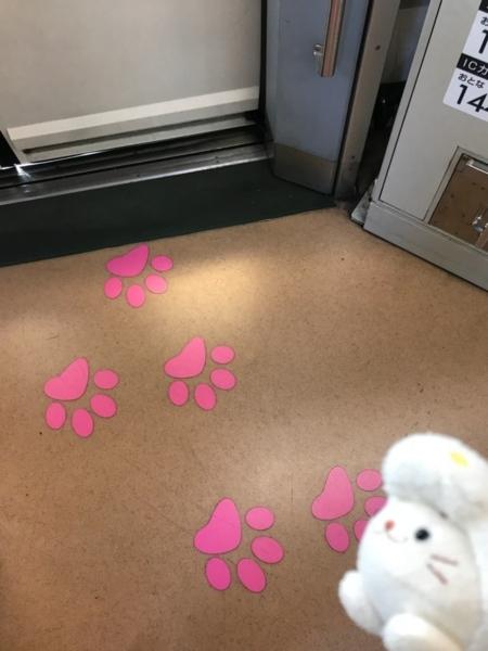東急世田谷線300系308F(玉電110周年記念 幸福の招き猫電車)