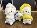 快速お座敷桃源郷パノラマ号(485系TG02編成華)(2018/04/21)