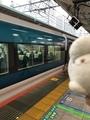特急踊り子15号(E257系NA-13編成)@東京駅