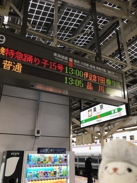 特急踊り子15号@東京駅