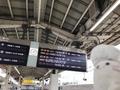 東京駅19番線のぞみ383号