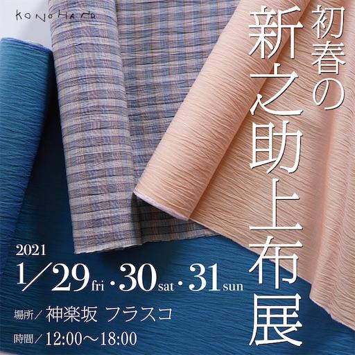 f:id:konohanaseki:20210127090714j:image