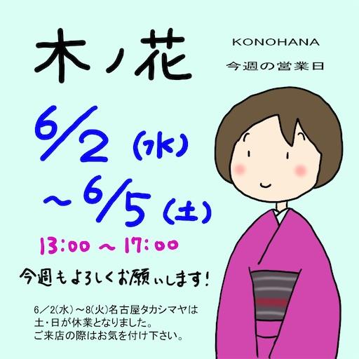 f:id:konohanaseki:20210531113241j:image