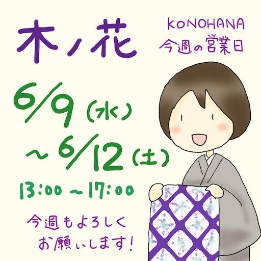 f:id:konohanaseki:20210607182437j:image