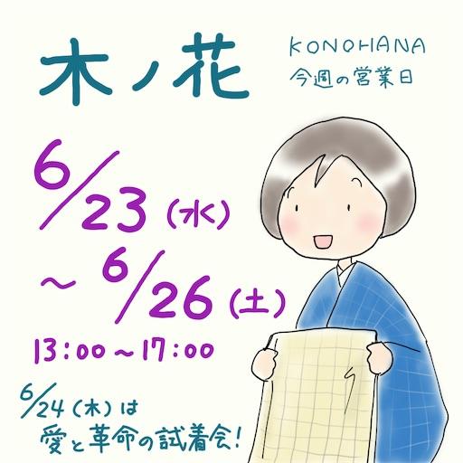 f:id:konohanaseki:20210623001426j:image