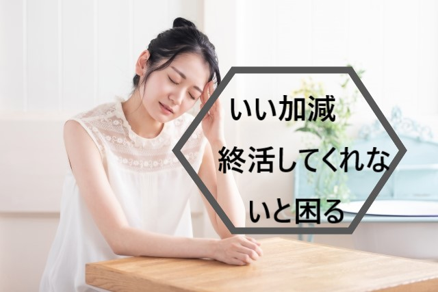 f:id:konohatan:20210530214632j:plain