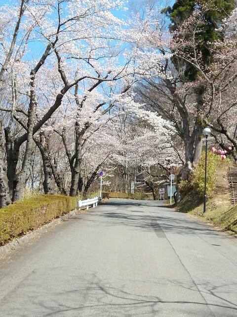 f:id:konohazukutsushin:20210416182820j:image