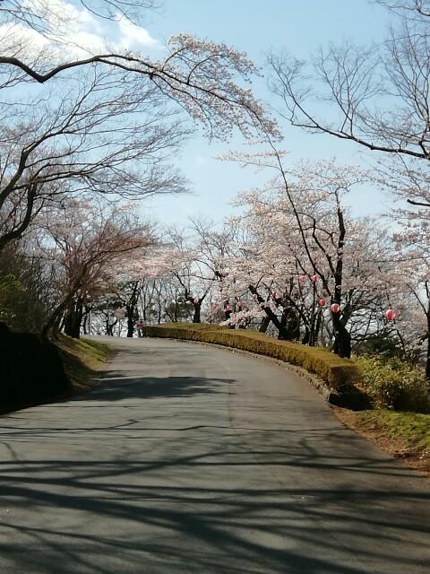 f:id:konohazukutsushin:20210416182845j:image