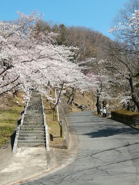 f:id:konohazukutsushin:20210416182913j:image