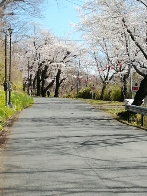 f:id:konohazukutsushin:20210416183018j:image