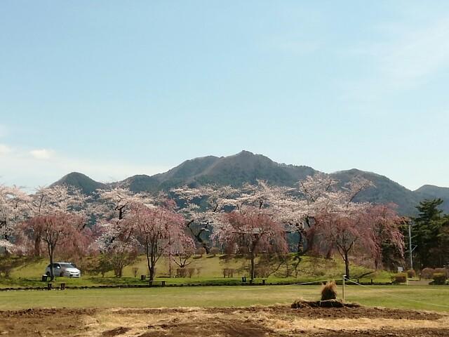 f:id:konohazukutsushin:20210416183536j:image