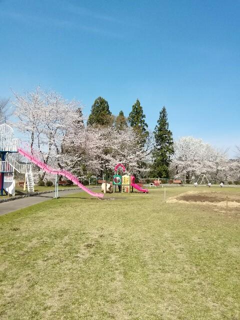 f:id:konohazukutsushin:20210416183640j:image