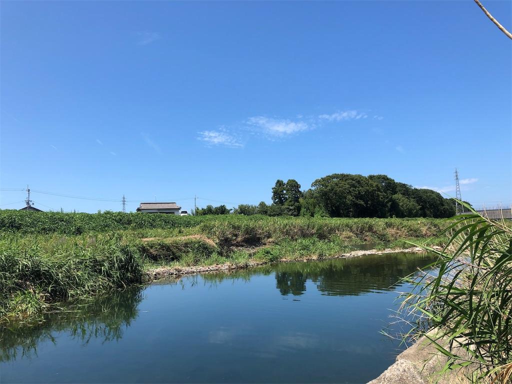 f:id:konokuro:20190814001926j:image