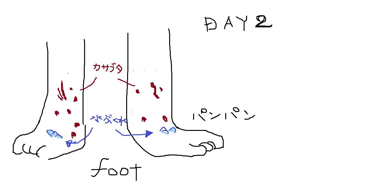 f:id:konokuro:20190814163603p:plain