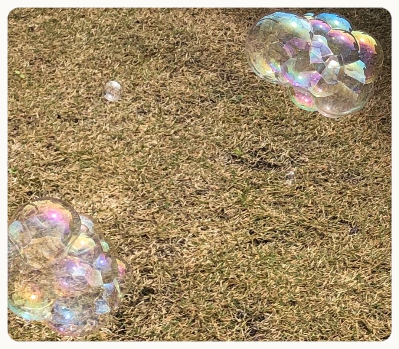 【ダイソー】バブルインバブル300円シャボン玉をやってみた