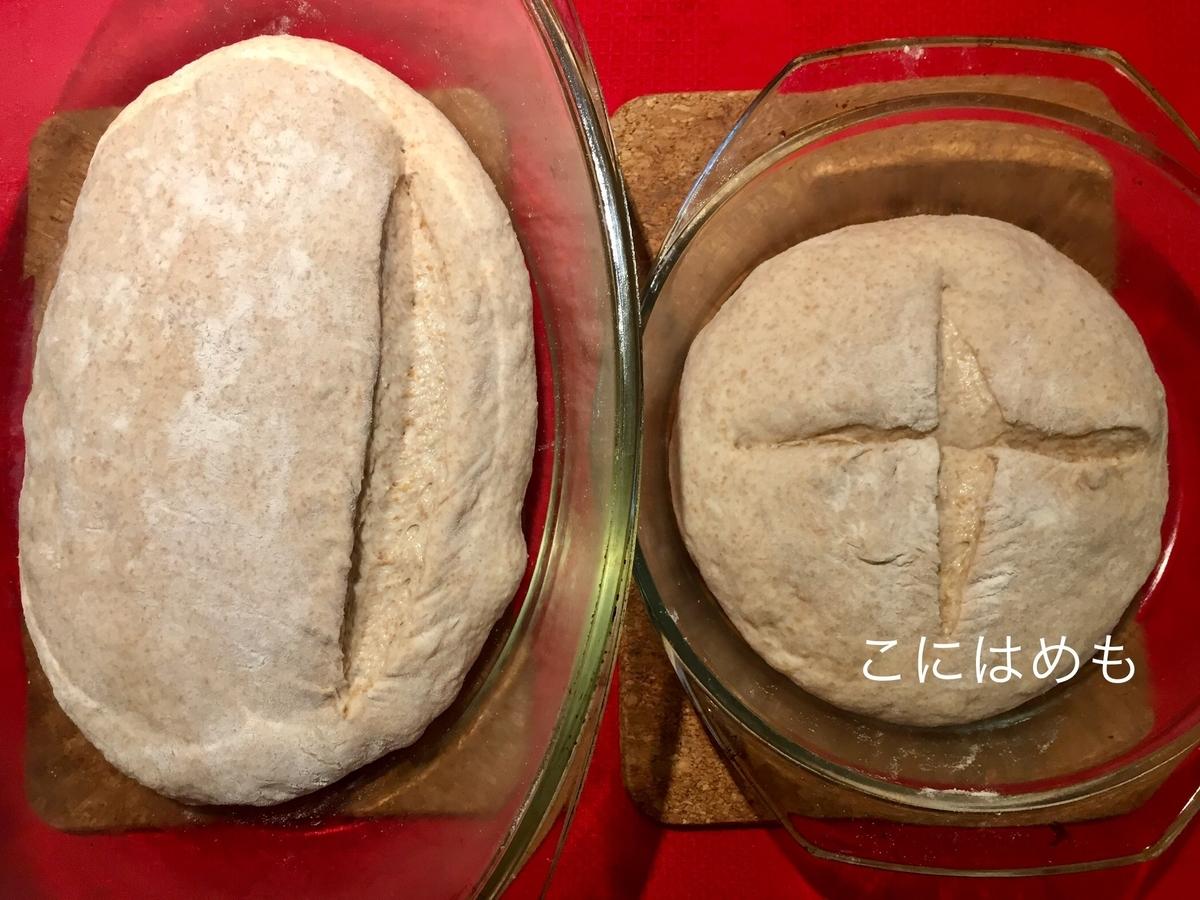 フタ付きの耐熱容器などにパン生地を入れ、 切り込み(クープ)を入れる。