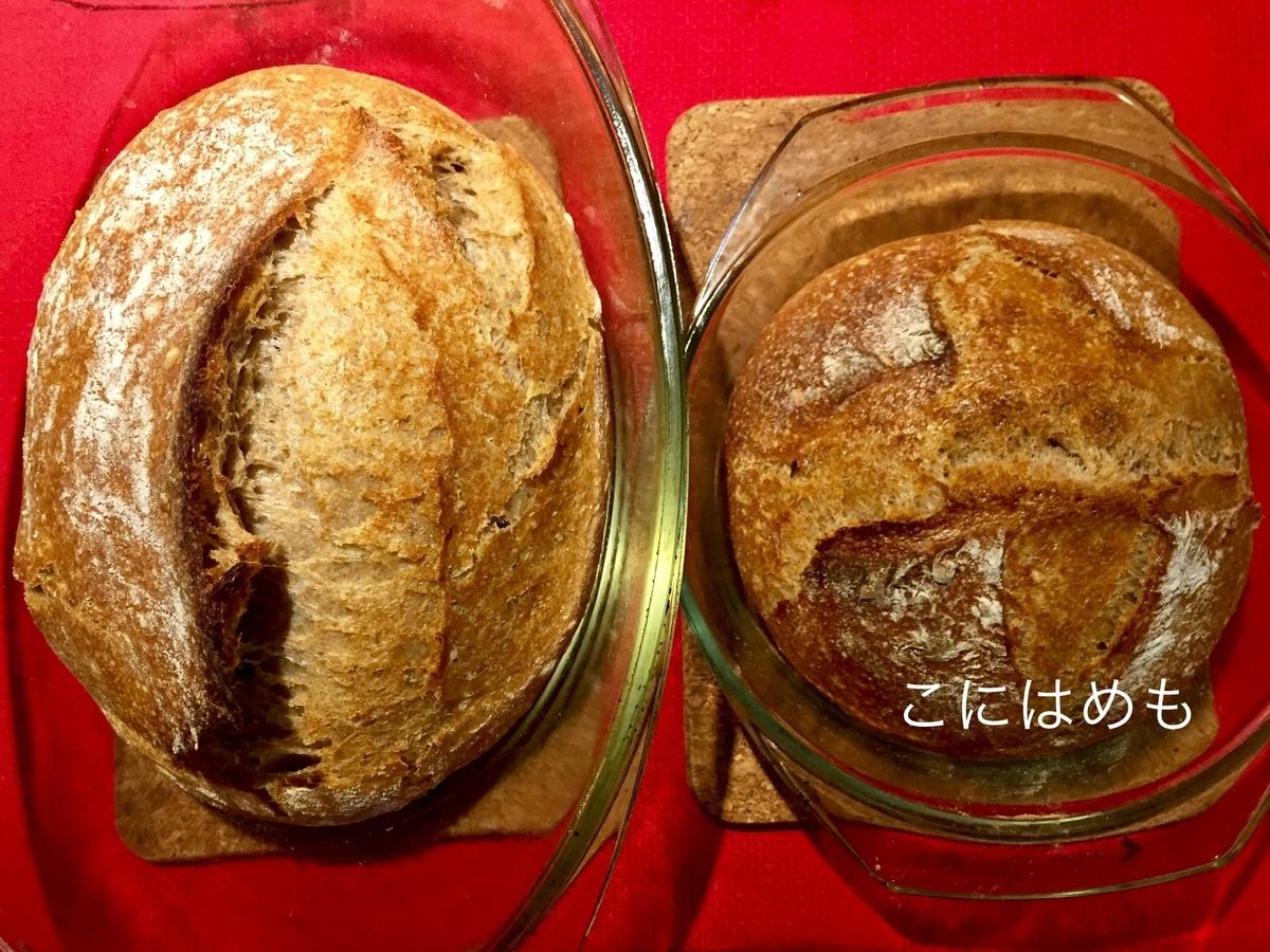 【天然酵母】栄養たっぷり!スペルト小麦と小麦胚芽の天然酵母パン。
