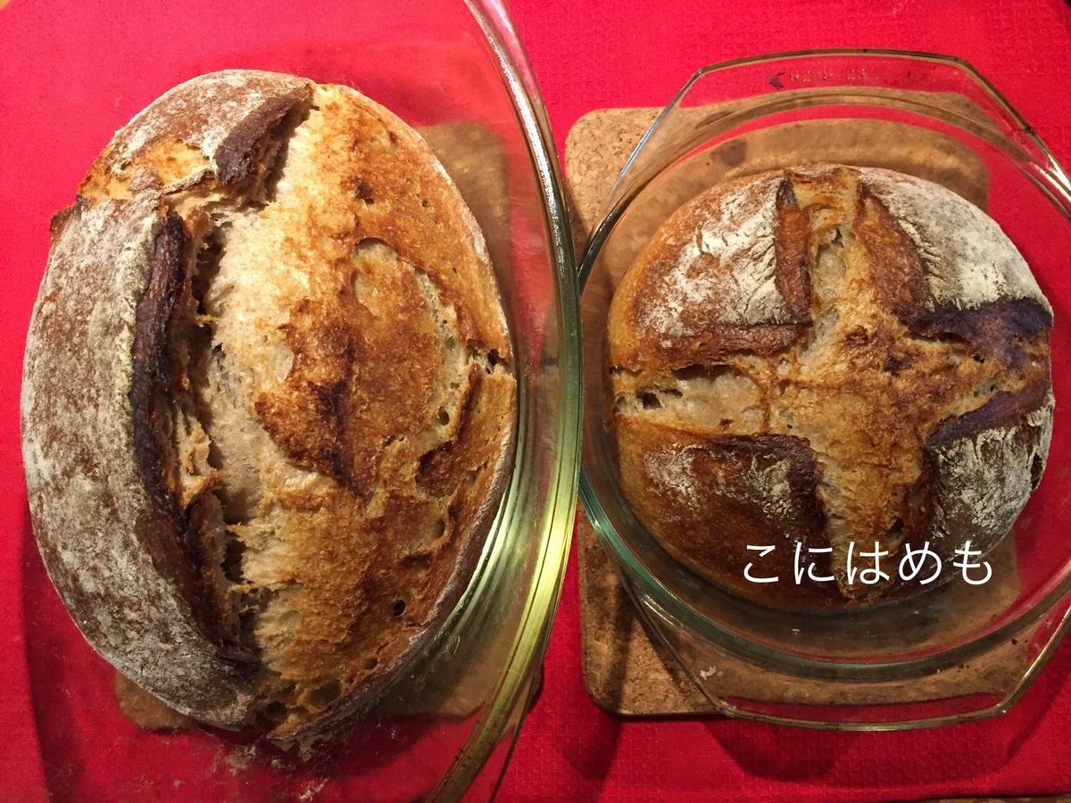 【天然酵母】フランスの「田舎パン」Pain de campagne:パン・ド・カンパーニュ。焼きあがり。