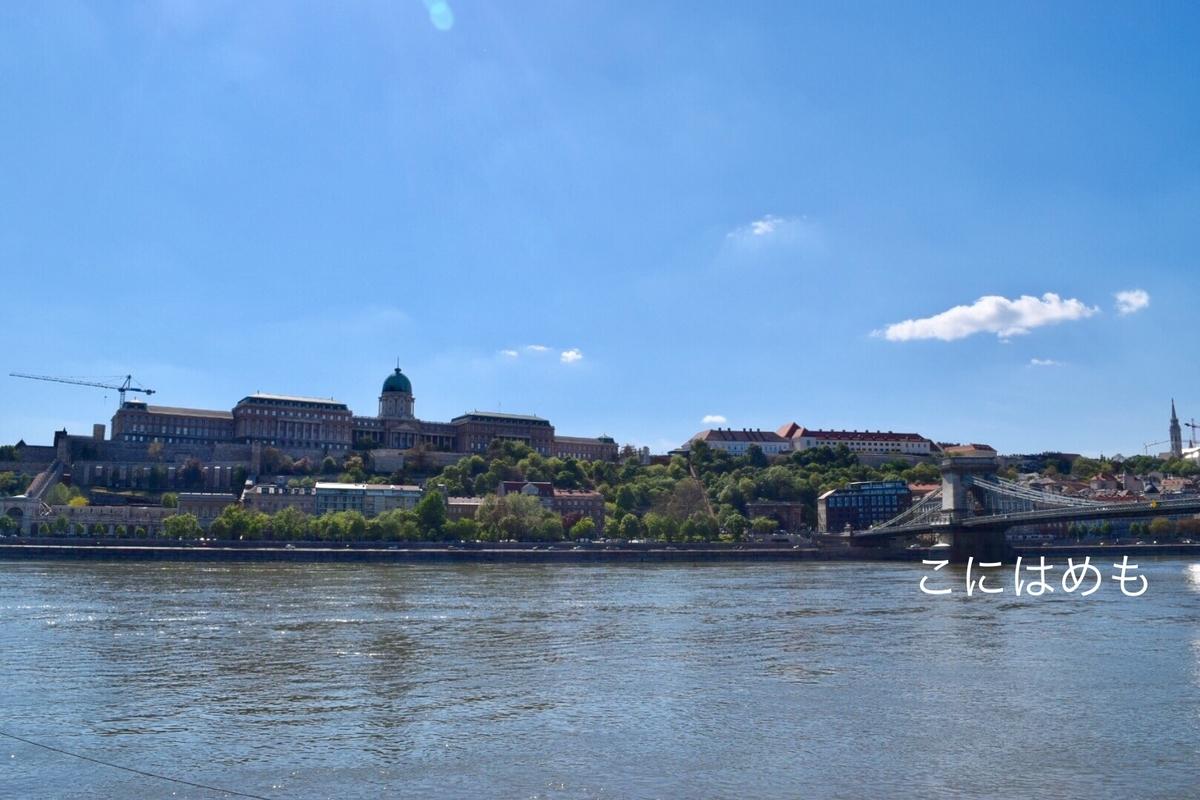 ドナウ川とブダペストの王宮。