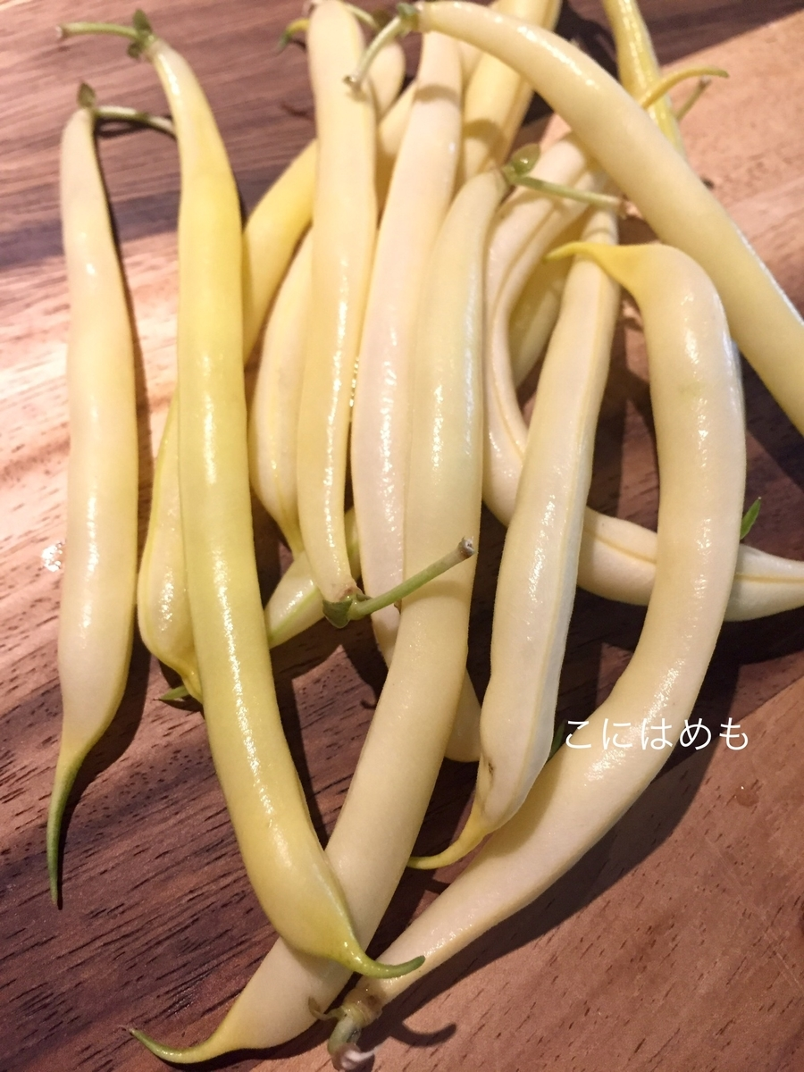 「zöldbab:ズルドバブ」黄色いんげん。