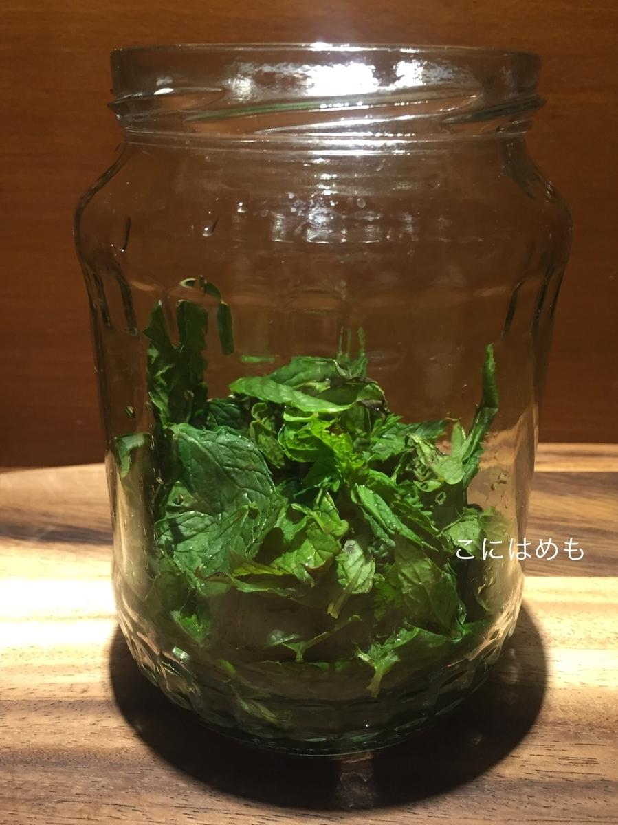 フレッシュミントの葉を摘み取り、瓶やボトルに入れる。