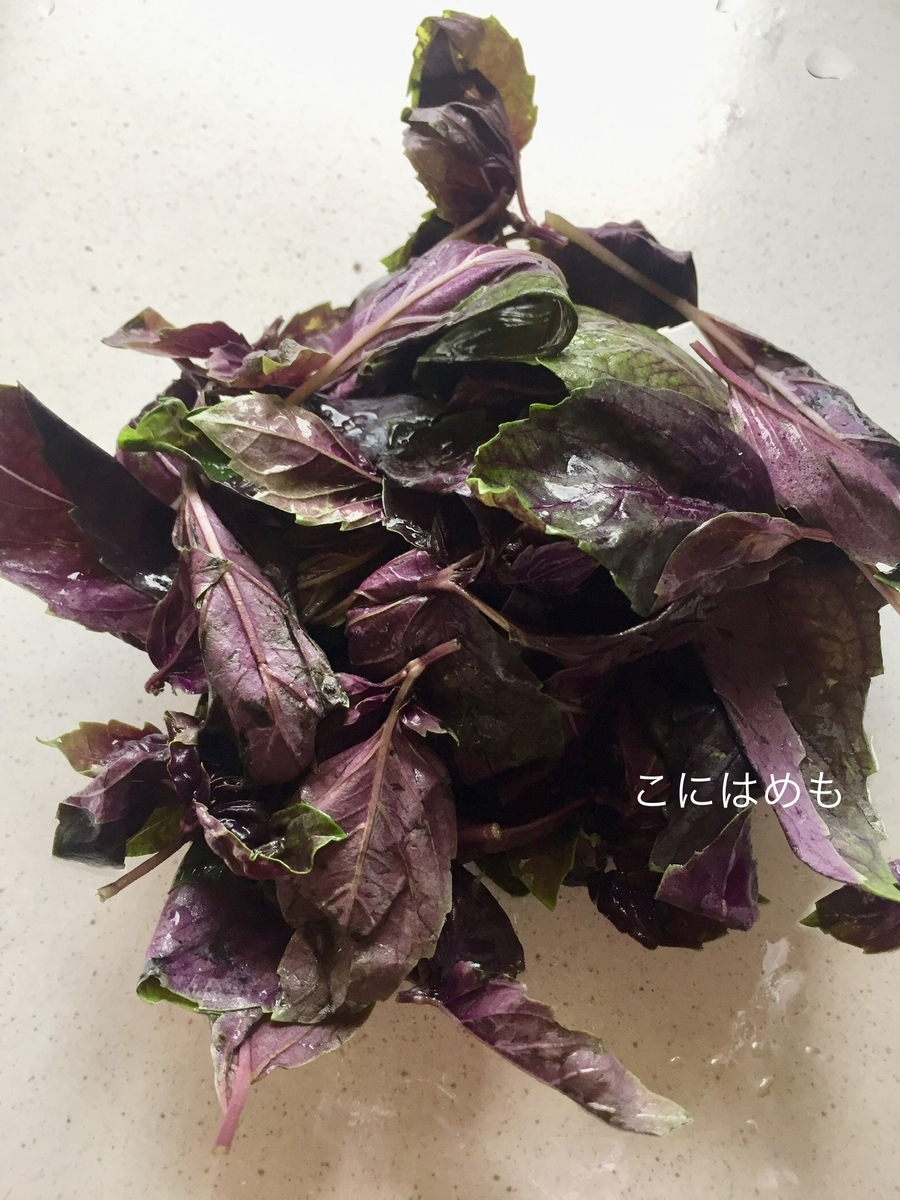 バジルをよく洗って、茎から葉を摘み取る。
