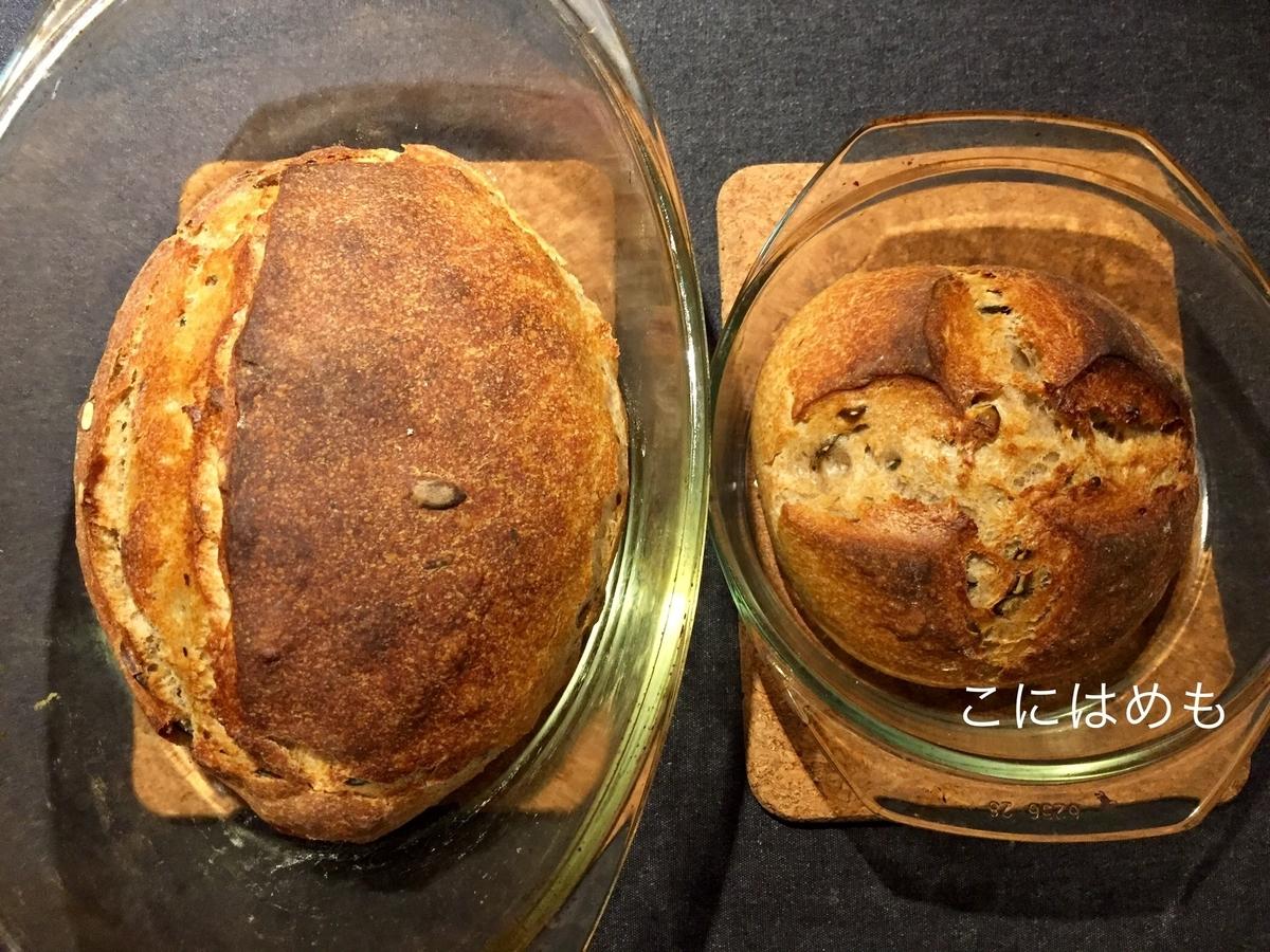 【天然酵母】かぼちゃの種入りフランスの「田舎パン」Pain de campagne:パン・ド・カンパーニュ。焼き上がり。
