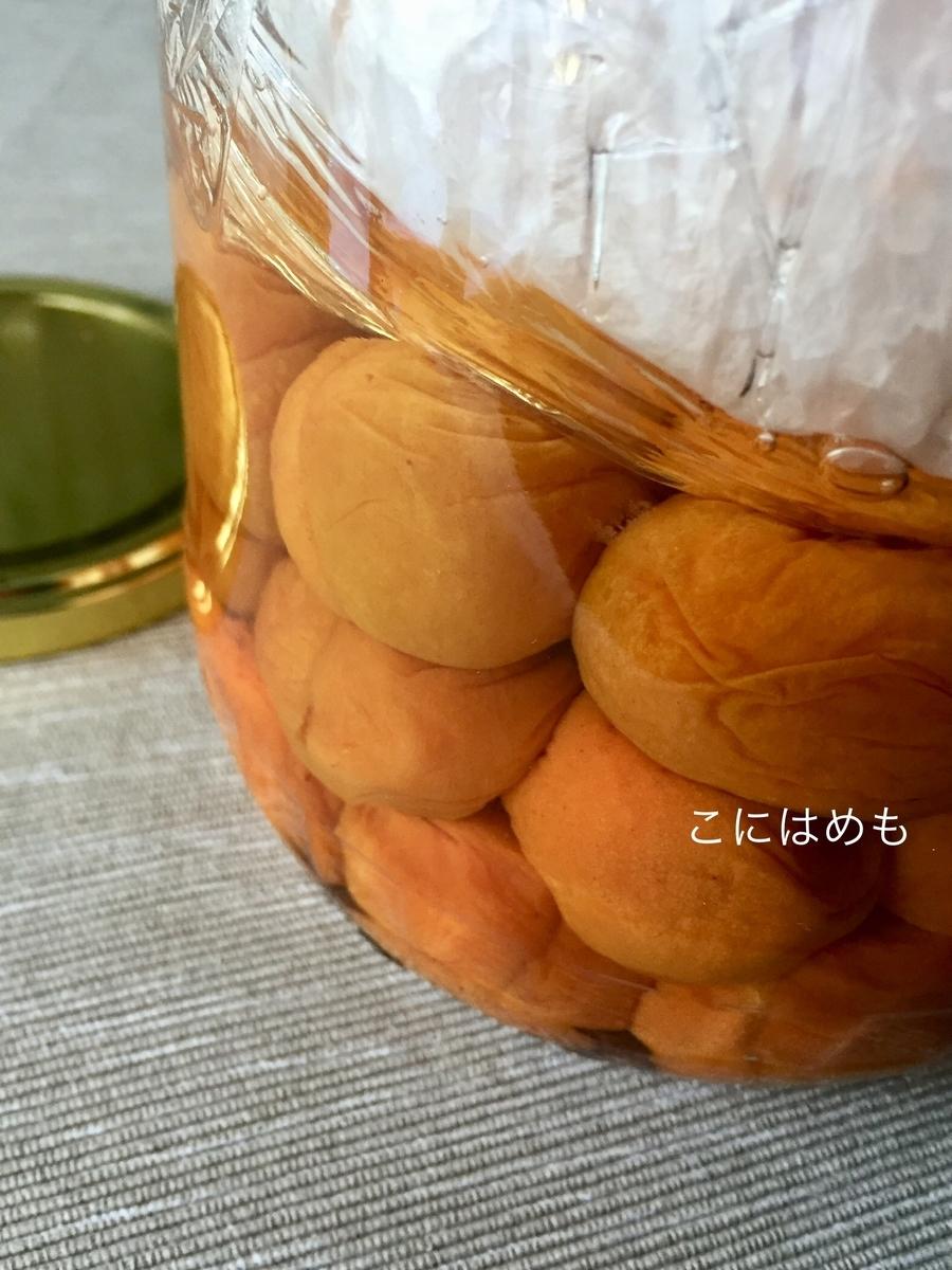 あんずで作る「梅干し・梅漬け」塩分15%(フタが金色のもの)