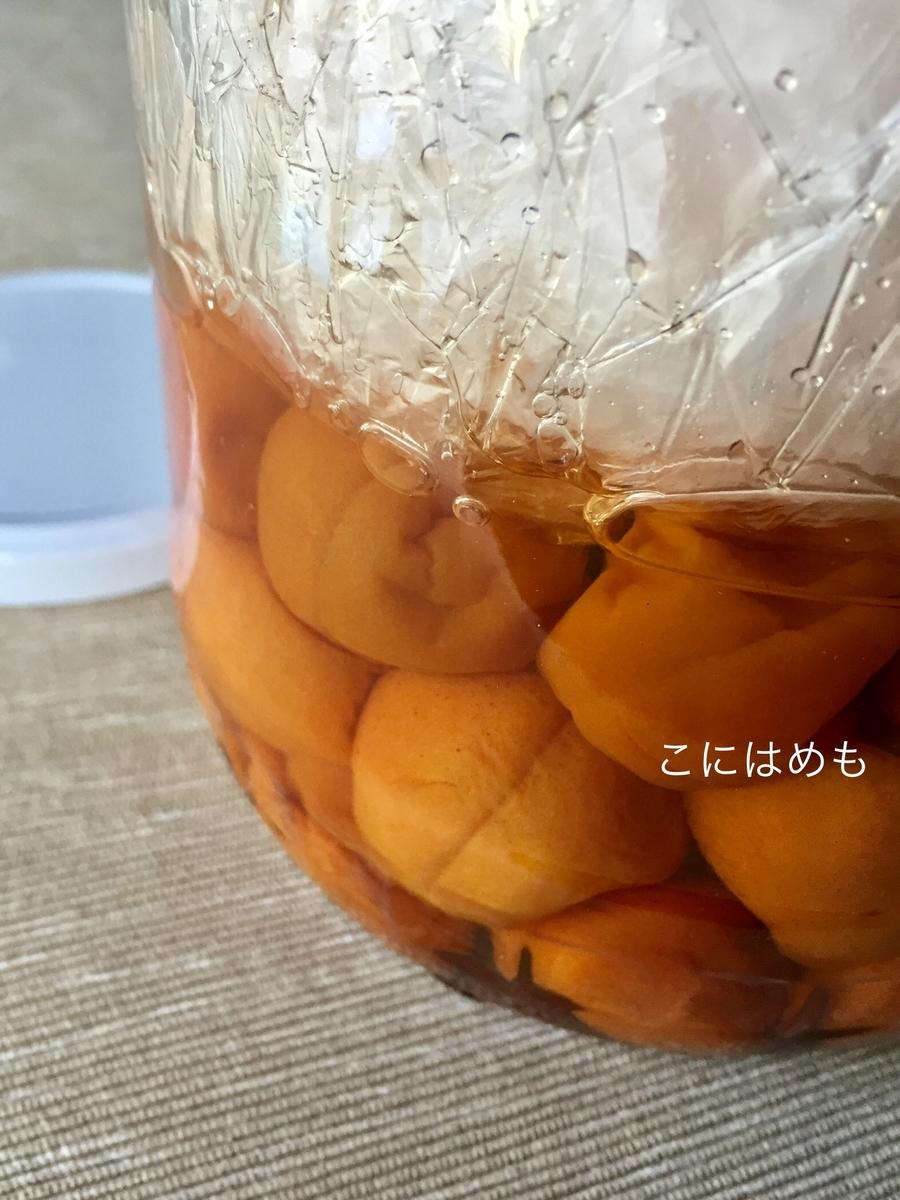 あんずで作る「梅干し・梅漬け」塩分10%(フタが白いもの)