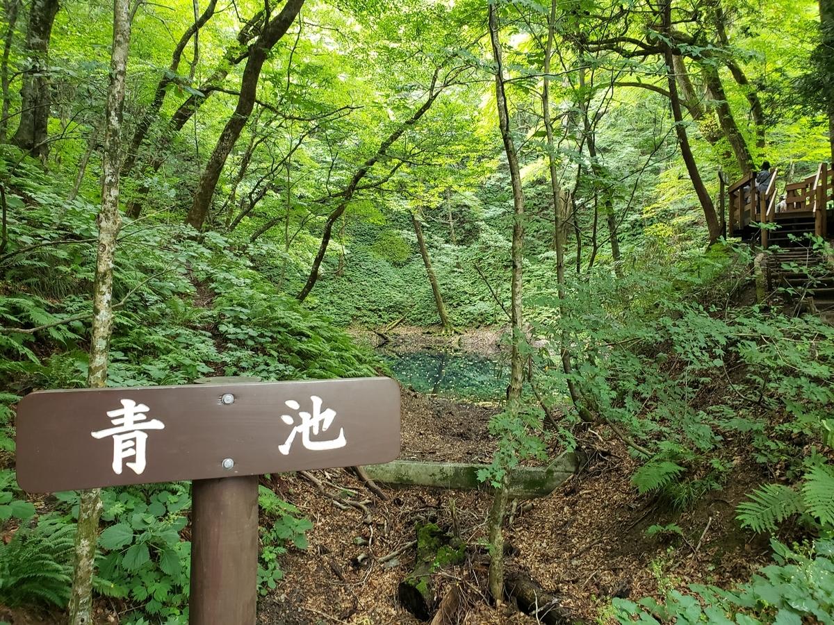 f:id:kootabi:20200219132352j:plain