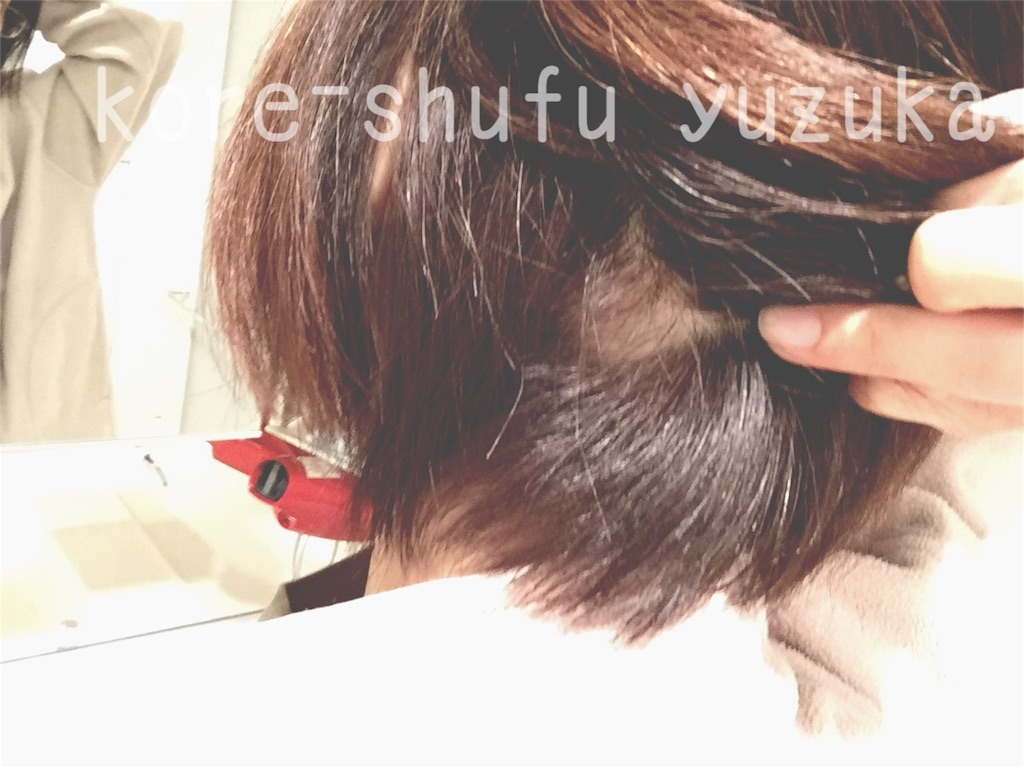 f:id:kore-shufu:20160311211107j:image