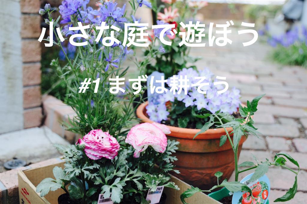 f:id:korekara-watashi:20200409183151p:image
