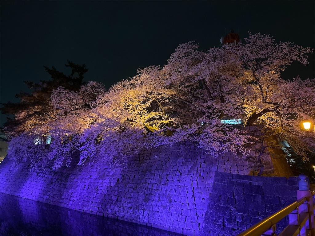 f:id:korekara-watashi:20210403211904j:image