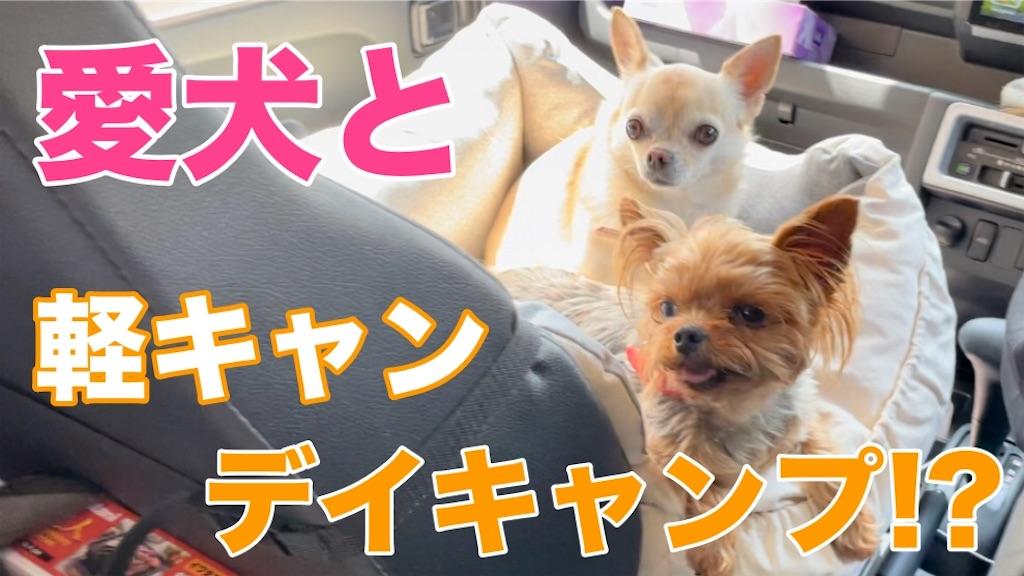 f:id:korekara-watashi:20210502083950j:image