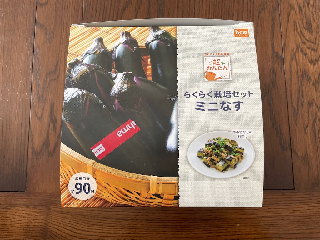 f:id:korekara-watashi:20210525131020j:image