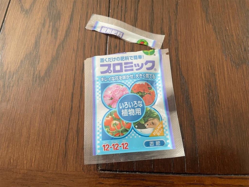 f:id:korekara-watashi:20210616151544j:image