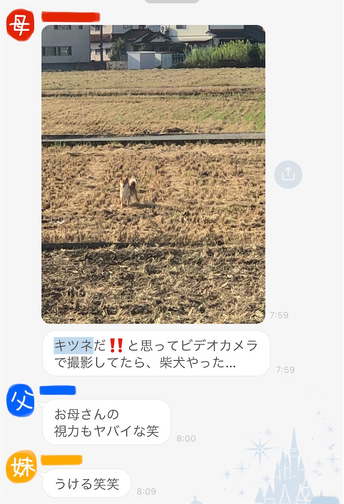 f:id:korekara-watashi:20211002000340j:image