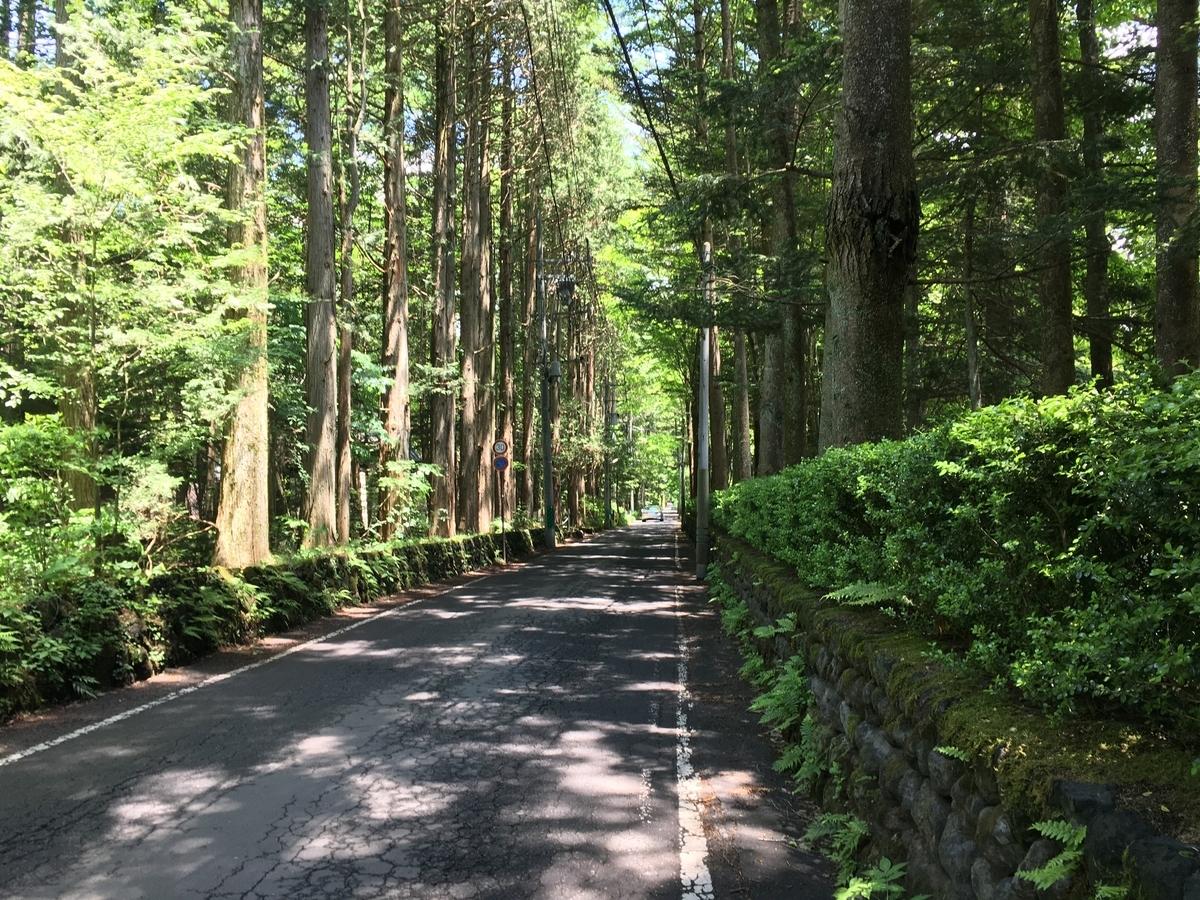 軽井沢 レンタサイクル サイクリング