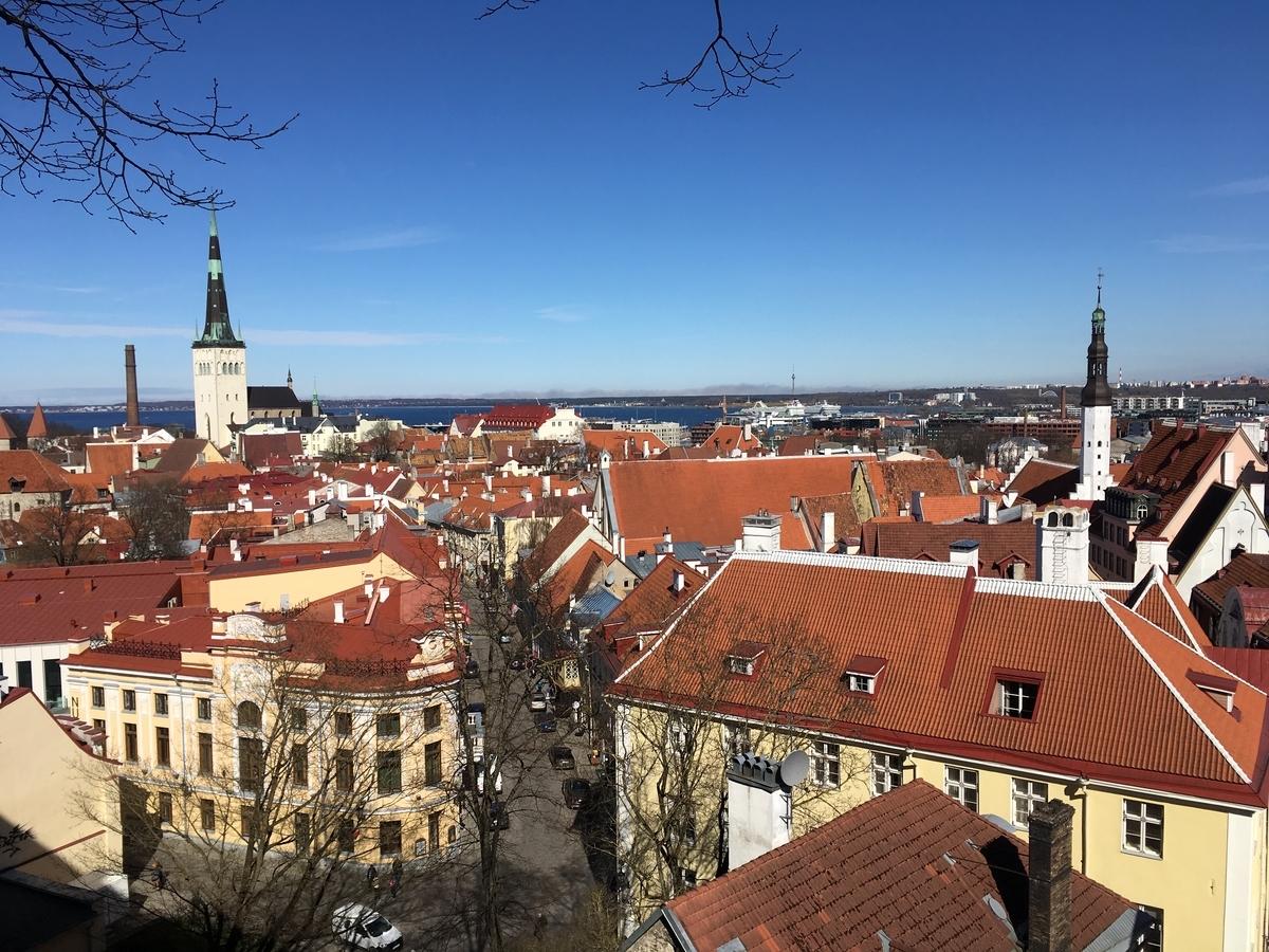 エストニア タリン歴史地区 コフトゥ展望台からの眺め