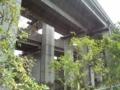 巨大構築物愛