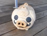 f:id:korohiti:20080917232123j:image