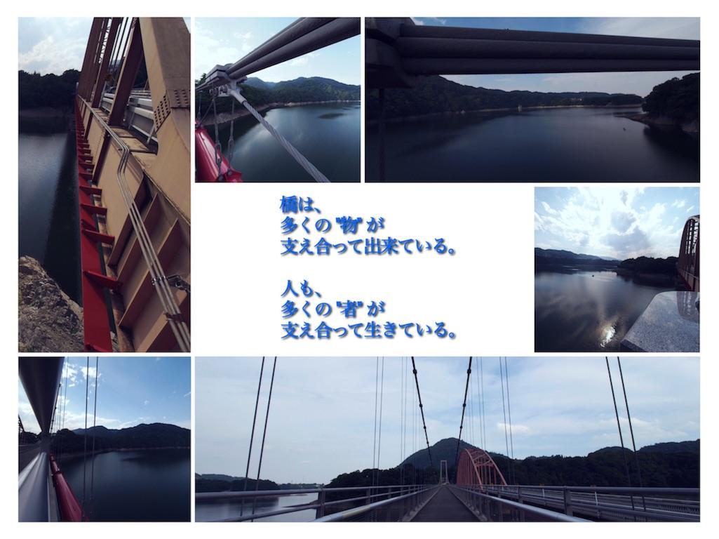 f:id:korokoro-nekochan:20160712000245j:image