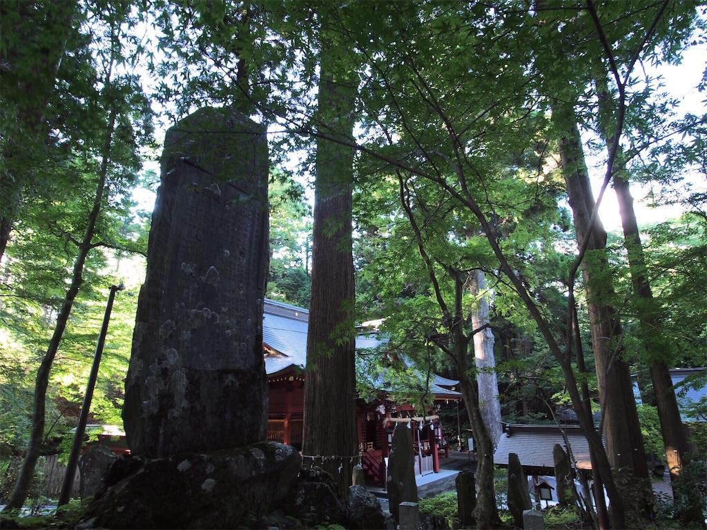 f:id:korokoro-nekochan:20160910134936j:image