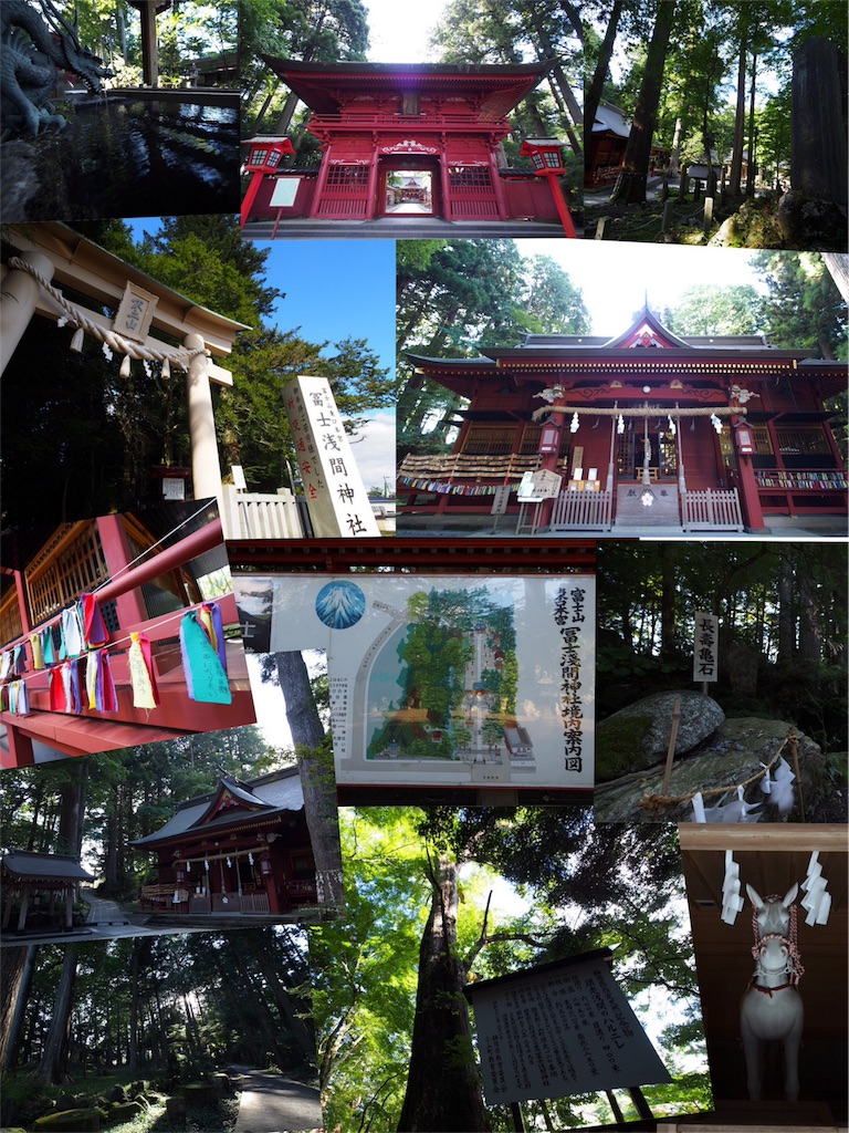 f:id:korokoro-nekochan:20160910155146j:image