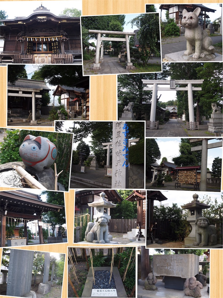 f:id:korokoro-nekochan:20160910155709j:image