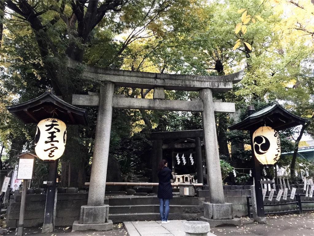f:id:korokoro-nekochan:20161122171453j:image
