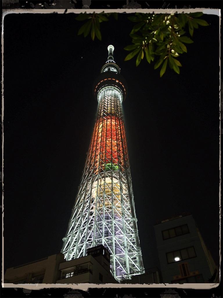 f:id:korokoro-nekochan:20161122172637j:image